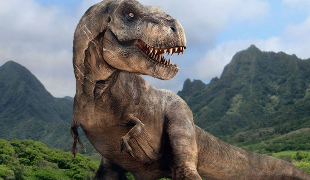 Why doesn't the Bible talk about the existence of dinosaurs?
