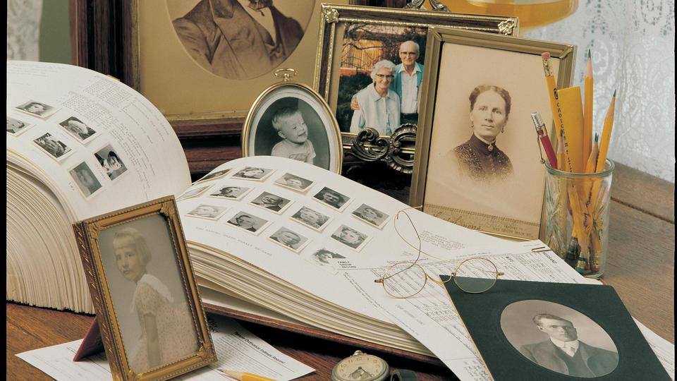 How would I report a genealogy error in the LDS records to the Mormon Church?