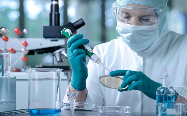 Does the LDS Church have a position on stem cell research?