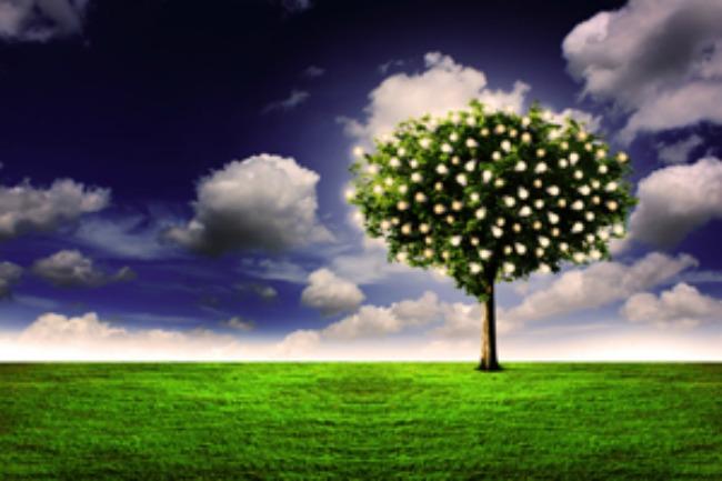 Where is the Garden of Eden today?