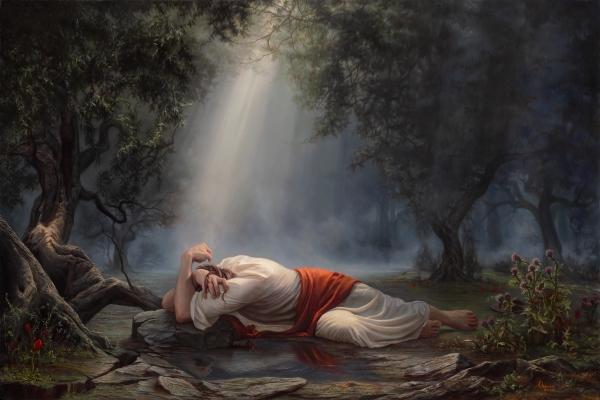 How can the Savior understand what it's like to have a miscarriage or stillborn birth?