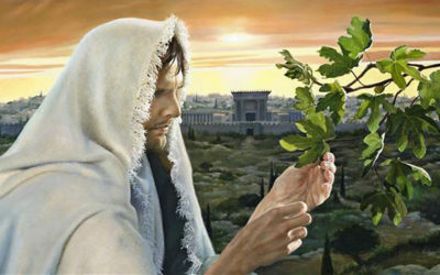 Was Jesus Christ the first person to be resurrected?