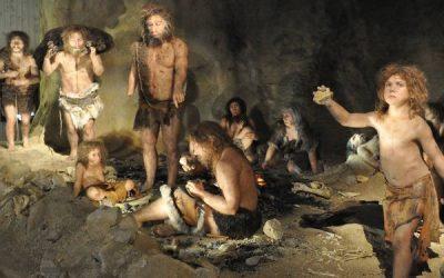 How do I explain Neanderthals to an investigator?
