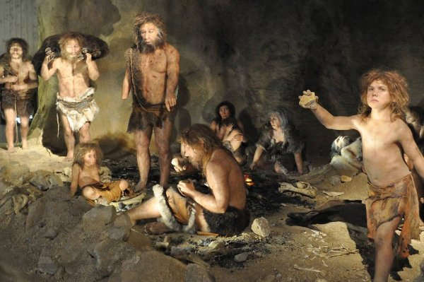 How do I explain Neanderthals to an investigator?