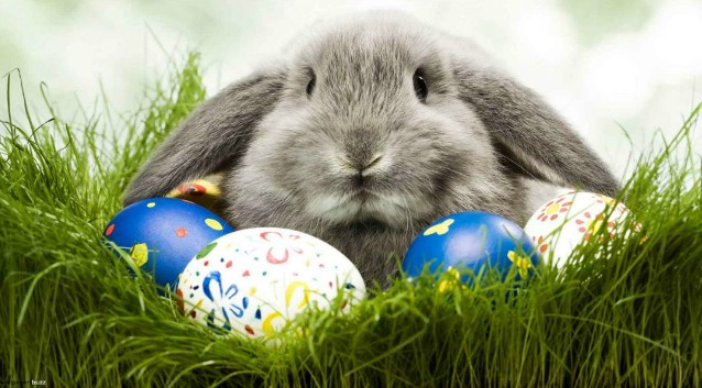 Why do we use a rabbit and eggs to celebrate the Resurrection of Christ?