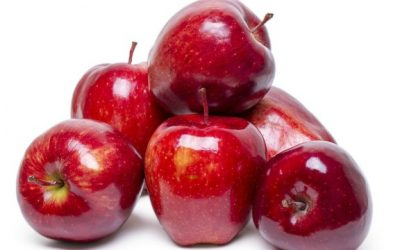 Was the forbidden fruit really an apple?