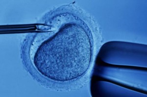 in-vitro-fertilization-2